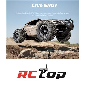 RCTop Cross country monster auto 1:12